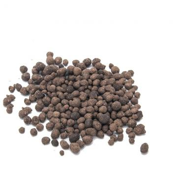 Kelp Seaweed Extract Fertilizer Powder Supplements Benefits on Plant